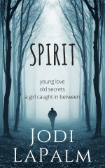 SPIRIT series, Book 1