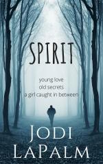 SPIRIT series, Book 1